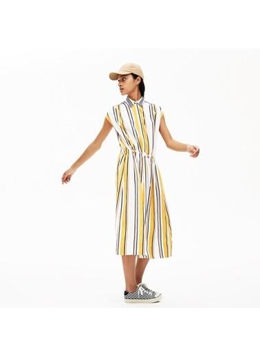 Lacoste Kadın Bebe Yaka Elbise EF9544.X9V Renkli